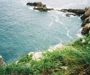 [여름 특집] 나도원의 '돌아·가다' – 여름섬